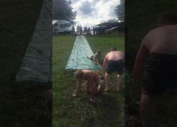 Video Zueschen2019 Wasserrutsche 06