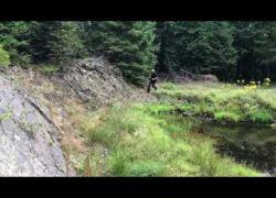 Video Zueschen2019 Allgemein 04